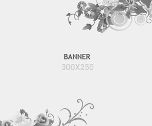 banner-300x250-demo