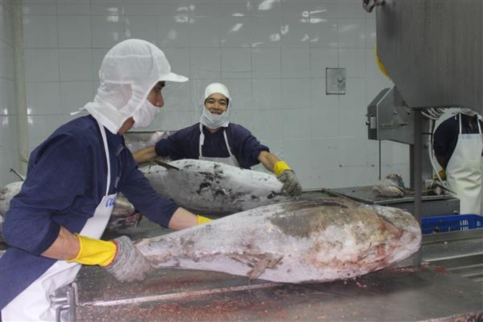 seafood enterprises are happy with removal of specialized regulations