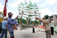 the drafting committee to amend conditions tying export rice