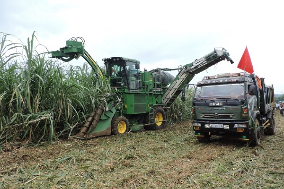 high inventory the sugar industry is in trouble