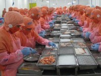 how to export seafood to reach 10 billion usd this year