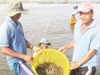 seafood export is full of difficulties but it is still achieving good growth