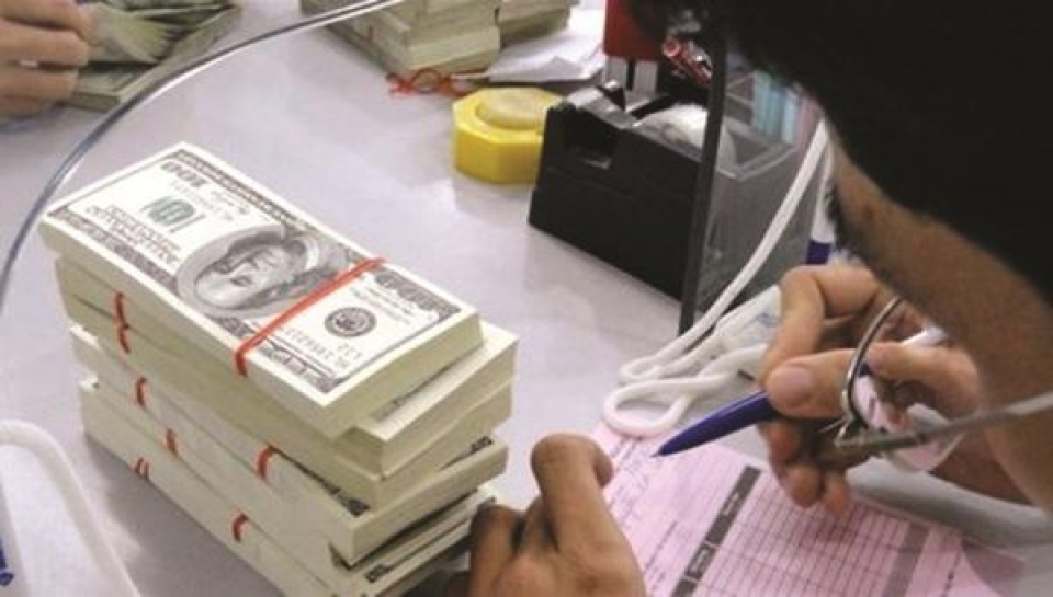 foreign currency credit balanced to avoid dollarization