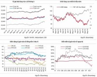 fluctuations on the currency field