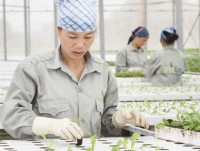 breakthrough technology to position vietnamese agricultural products