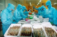 great challenges for vietnam seafood in 2017