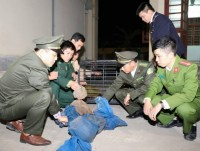 ha tinh customs arrested 2 perpetrators transporting wild animals