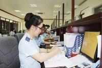records submitted through the customs public online service system increased by 10 times