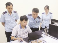 it force in customs efforts to carry out key tasks