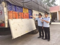 many perpetrators smuggling mangoes threaten customs officers