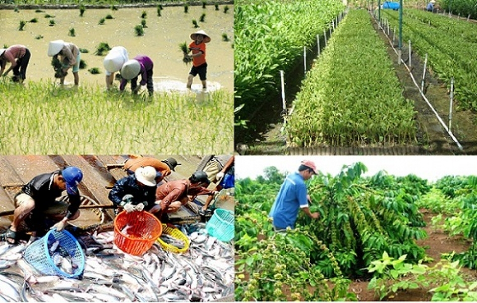 some agricultural commodities are supported to stabilize prices