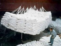 pilot bids set for sugar imports