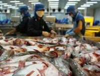 export of farmed fish fetches nearly us 31 billion