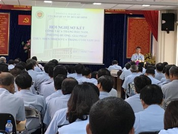 ho chi minh city customs focus on arranging and perfecting the organizational structure model