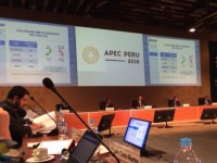 apec 2016 the customs business dialogue and the precedence for smes