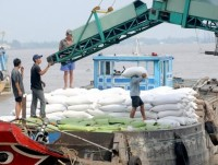 agro forestry fishery exports up rice down