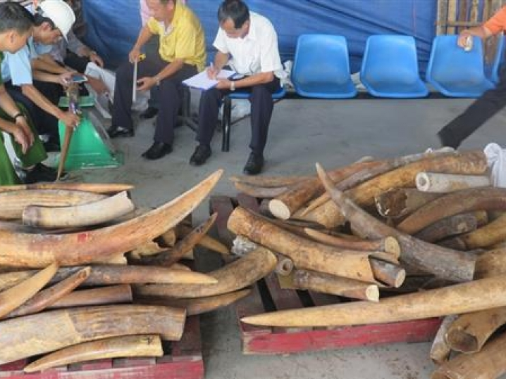 ho chi minh city many new methods of smuggling occurred