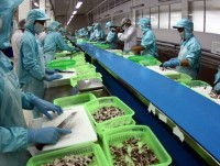 seafood exports to china expected to reach top of billions