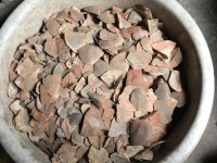 prosecuting case of hiding 316 kg pangolin scales at a farm