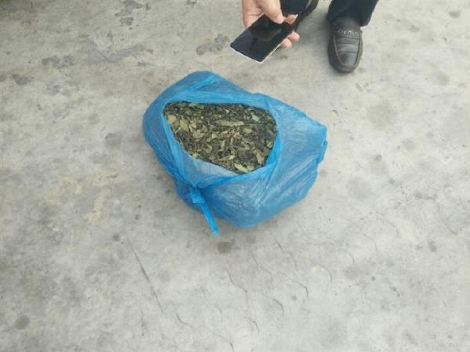 70kg of dried leaves suspected as khat leaves were detected in a shipment