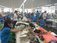 the leather and footwear industry continues to grow without tpp