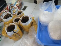 customs arrested the man trafficking more than 17 kg of cocaine