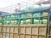 seizure of fine wood cargo valued at nearly half a billion vnd