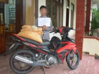 quang binh border guard arrested a perpetrator who transported 25 kg of explosives