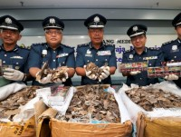 klia customs seizes hong kong bound pangolin scales worth rm44m