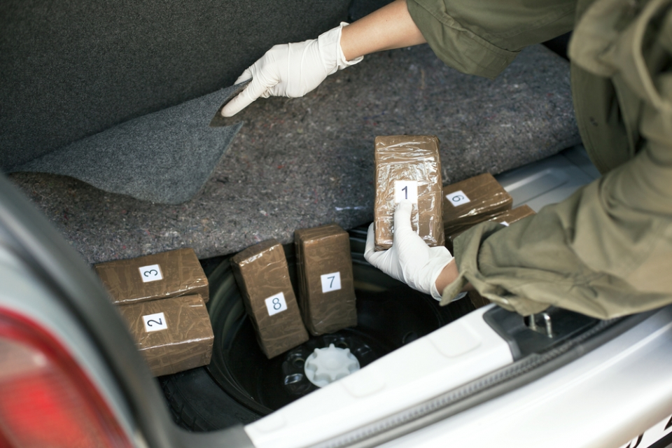customs and border patrol officers seize six tons of narcotics in 24 hour period