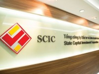 the government stipulates cases that are not invested by scic