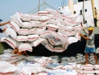 glutinous rice exports sharply increase