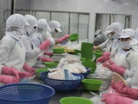 expanding the e cert grant for exporting seafood