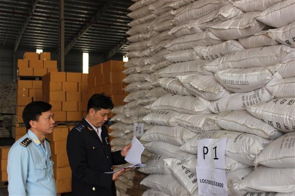 hai phong customs improving the internal management
