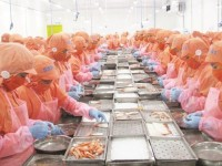 reason for export seafood returns