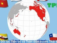 why does vietnam have to sign many ftas