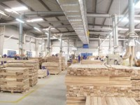 wood exports rapid growth great potential