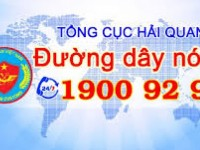 customs receives more than 2400 messages via hotline 19009299