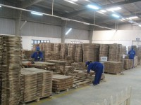 wood exports exceeds the target expected at us 8 billion