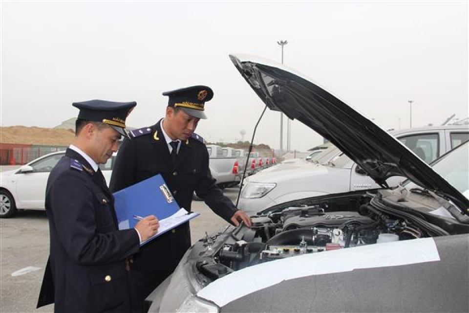 how to restructure the model of customs branch level