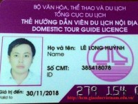 increasing assessment fee for issuance of domestic tour guide licenses