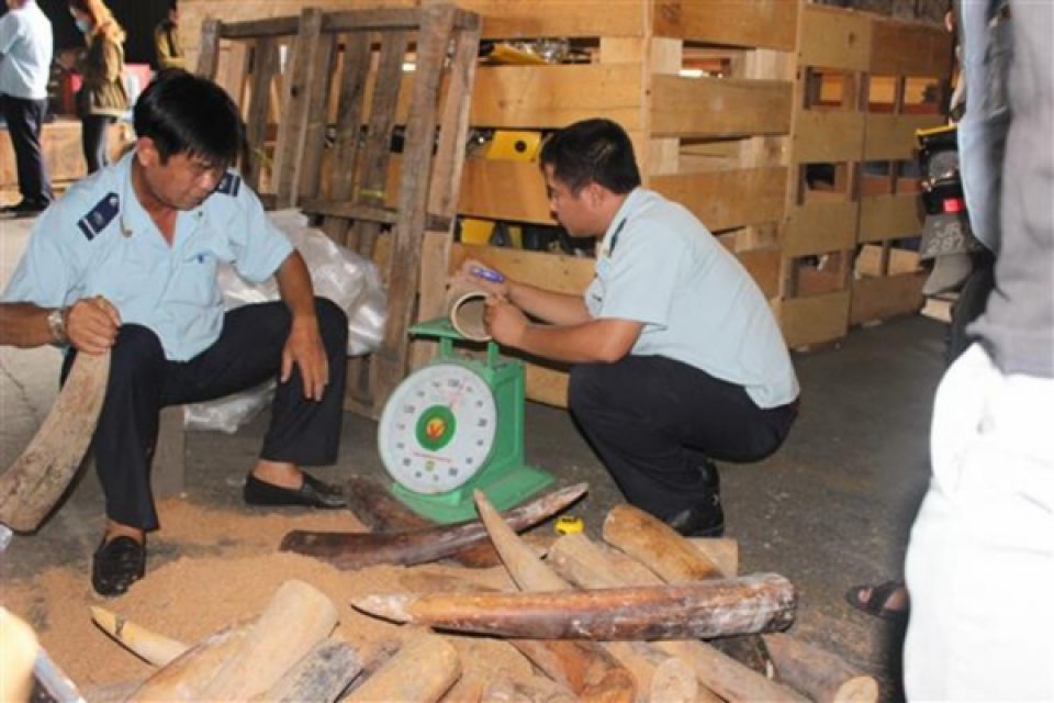 hcmc customs prevents dozens of substandard imported shipments