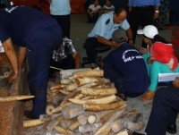 the view on handling acts of smuggling and illegal transport of wildlife is not consistent