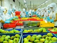 vietnam targets vegetable fruit export value at us 3 billion