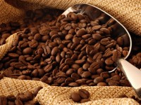 global coffee exports forecast to hit 5 year low