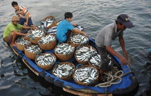cooperation in east sea fisheries management environmental protection