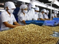 agricultural exports flourish in first months of 2018
