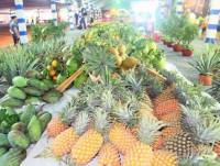 vietnams export ratio of farm produce in decline