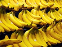 japan now open to vietnam banana growers