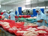 tra fish exports to brazil up 172